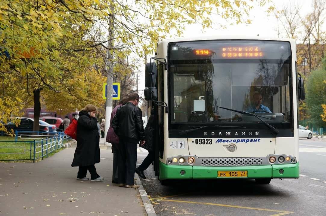 автобус до картинок стал колени