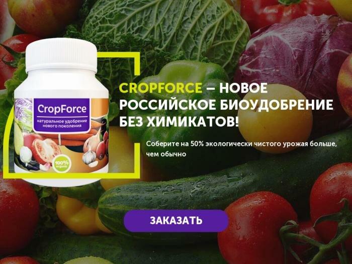 Биоудобрение CropForce в Прокопьевске