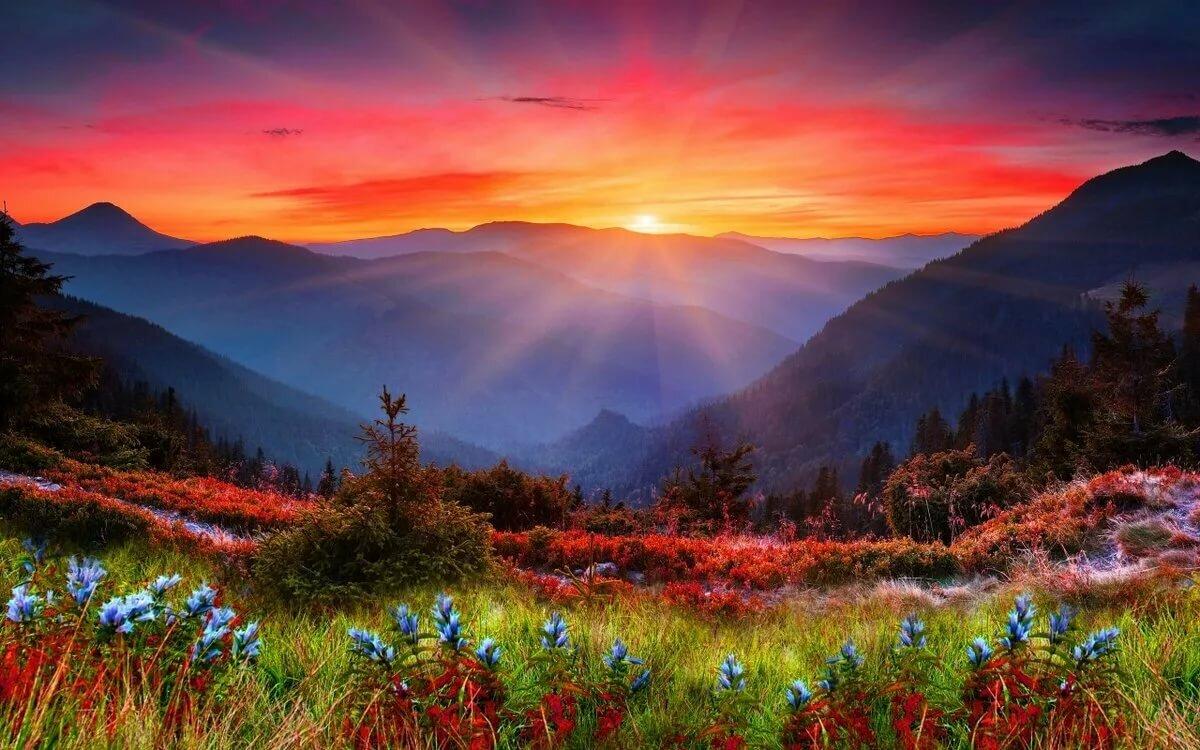 образе сестры картинки красивого восхода дом окружает