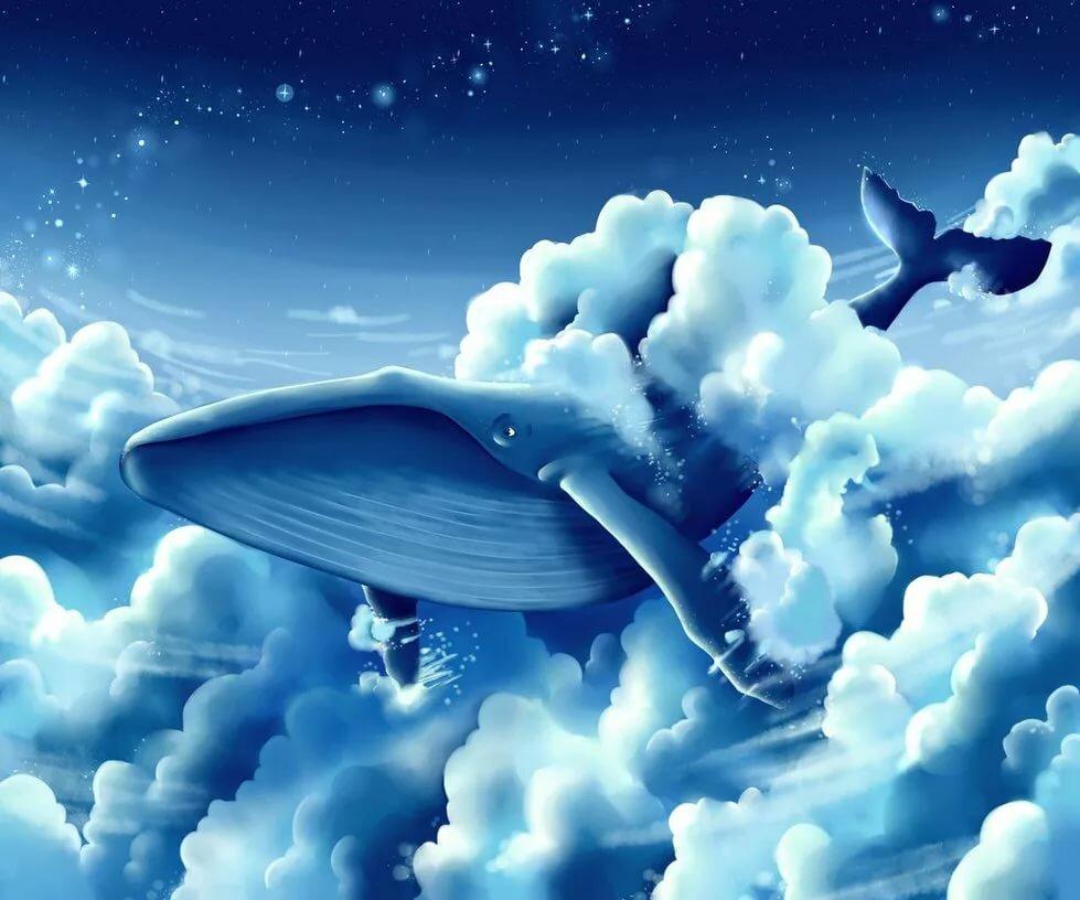 горожан картинки с китами в небе приготовить