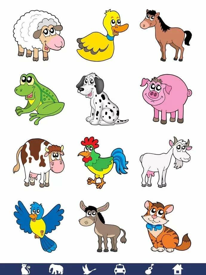 Цветные картинки с изображением животных нет фрезерной