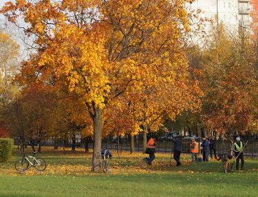 сквер отрадное осень