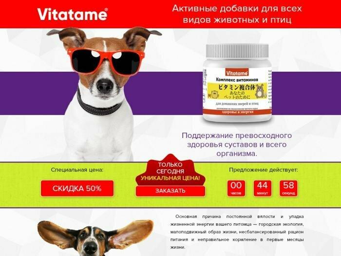 Активные витамины для питомцев в Одинцово