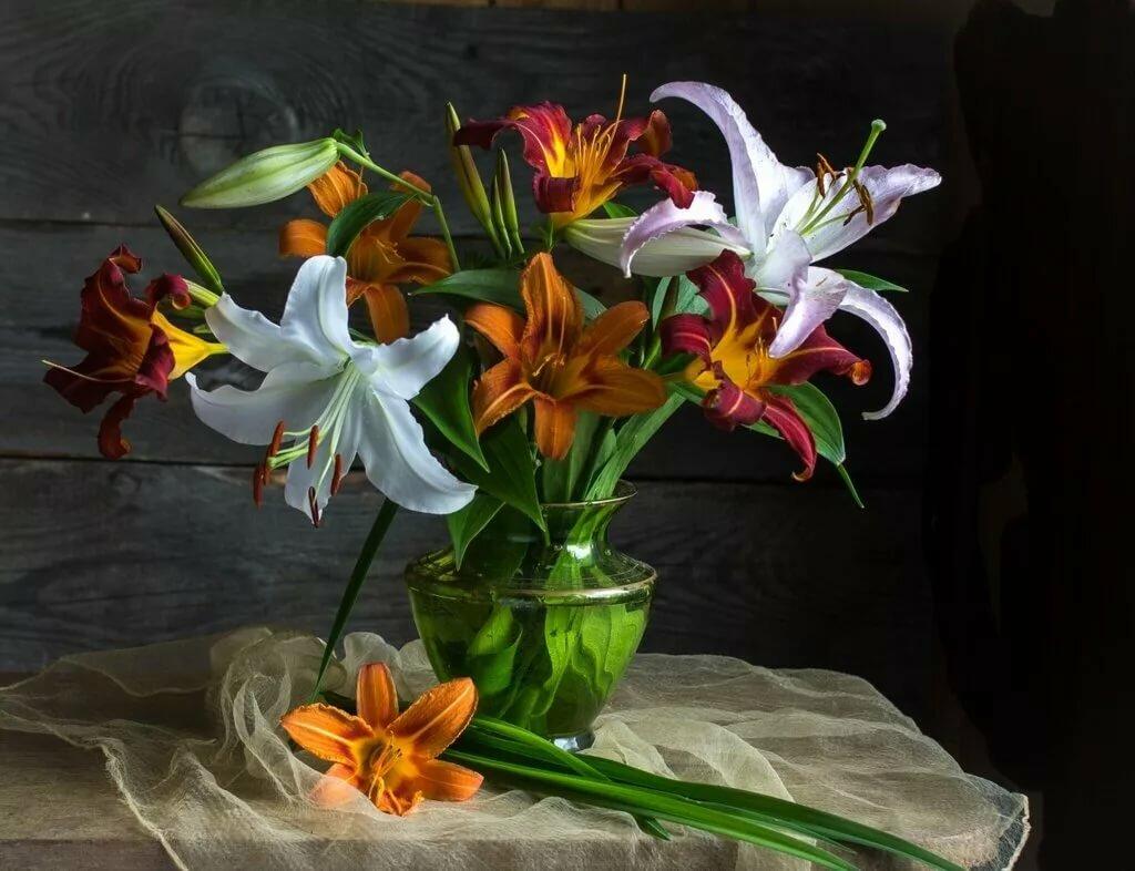 можем изготовить художественные фото цветы лилии фильма