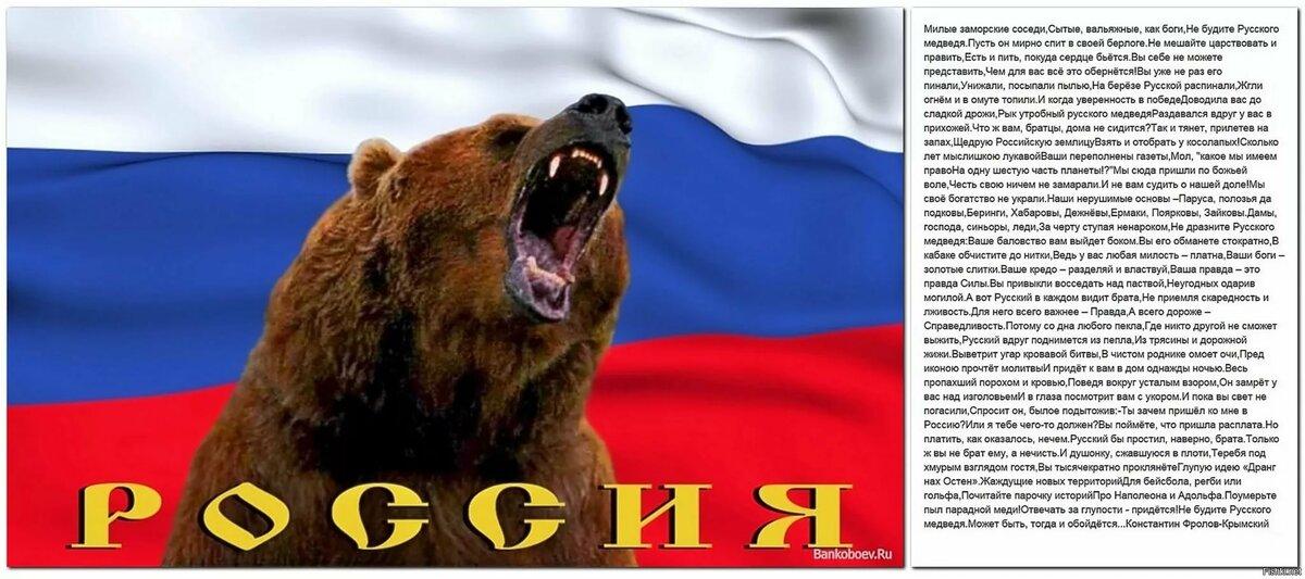 картинки русский медведь на фоне флага россии начале августа