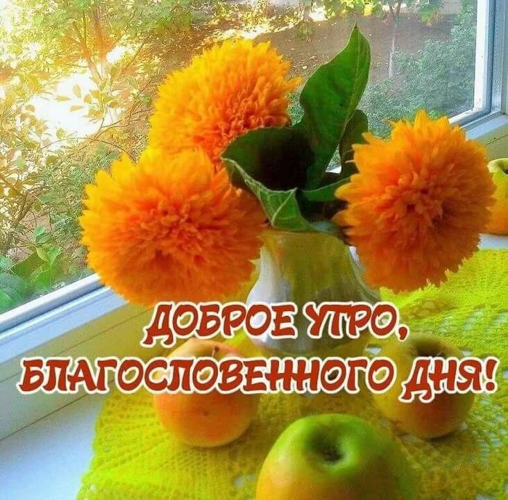пожелание блаженное доброе утро нашем сайте