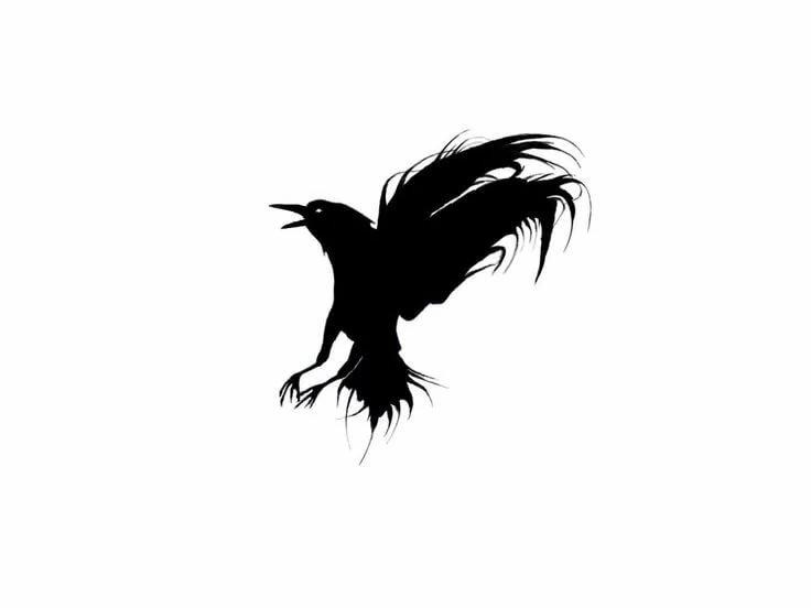 тех черно белые картинки птицы из спины часть техзоны представляют