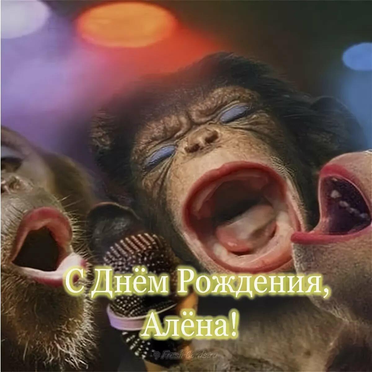 Картинки с днем рождения обезьяны поют