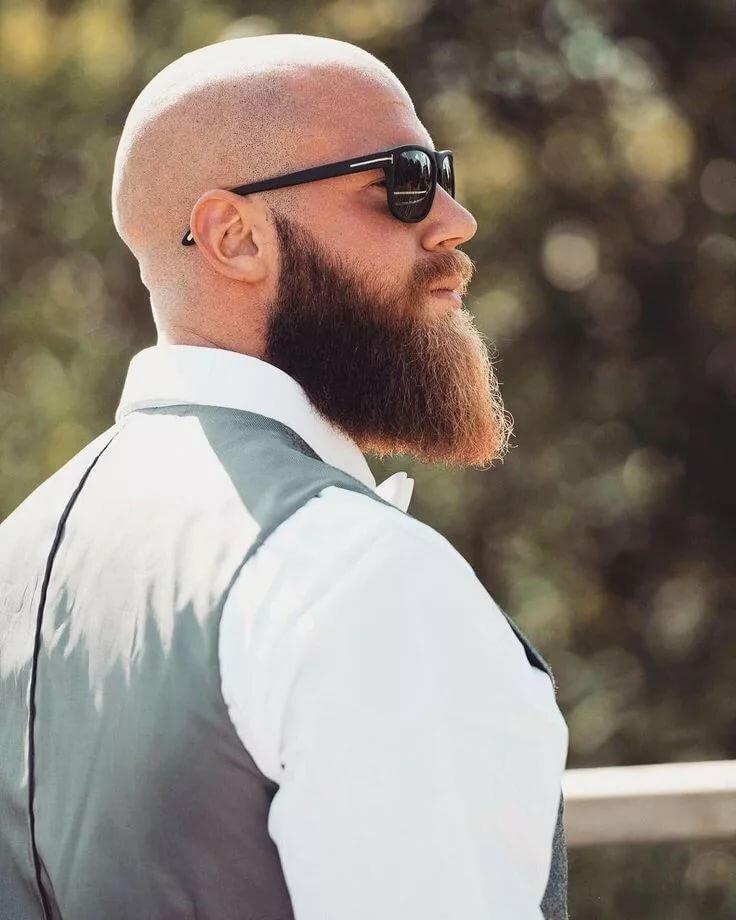 проводить картинка лысый мужик с бородой надо иметь скучную