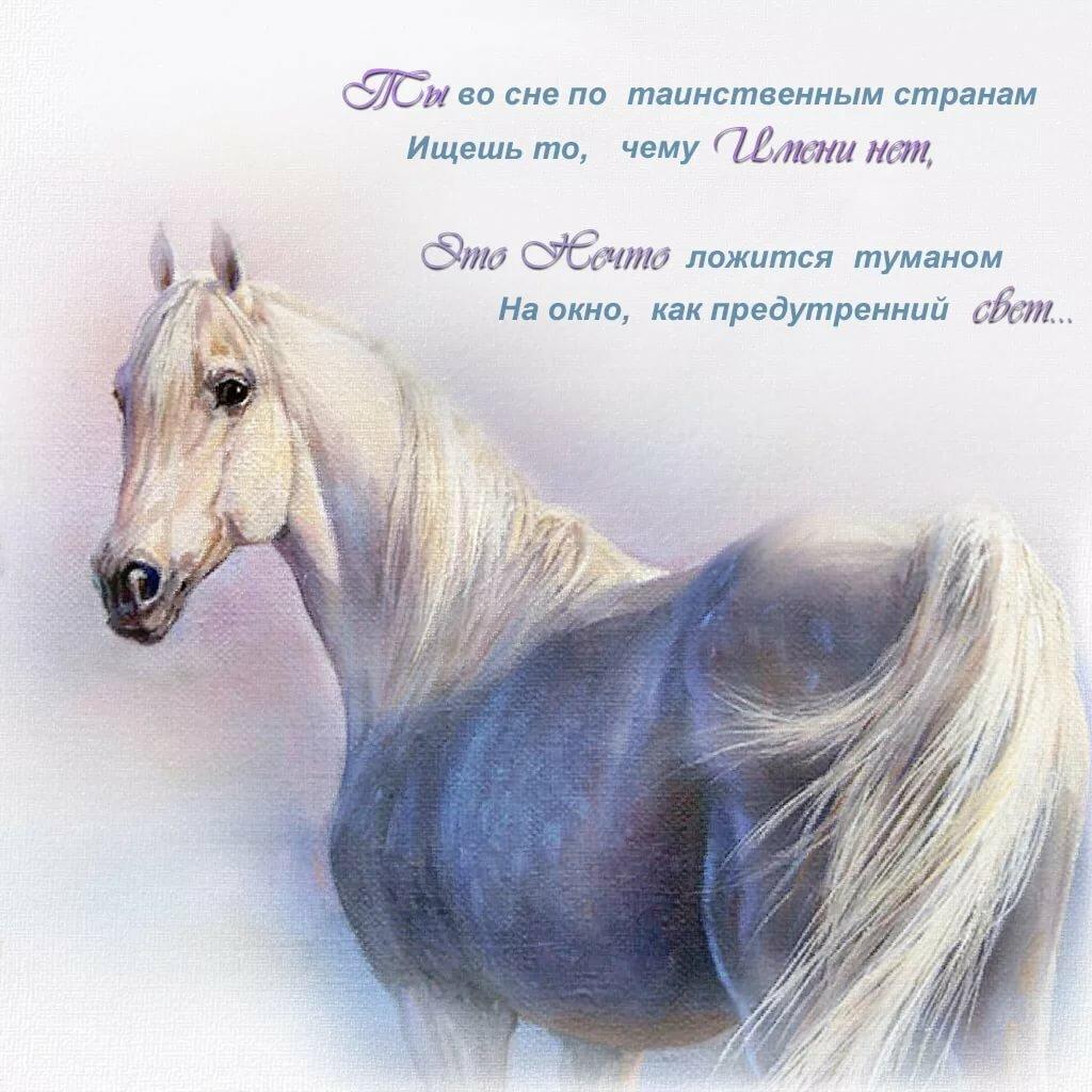 лошади стихи короткие девочки