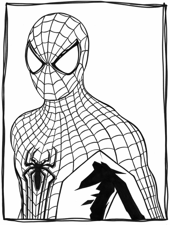 Рисунок человек паук картинка