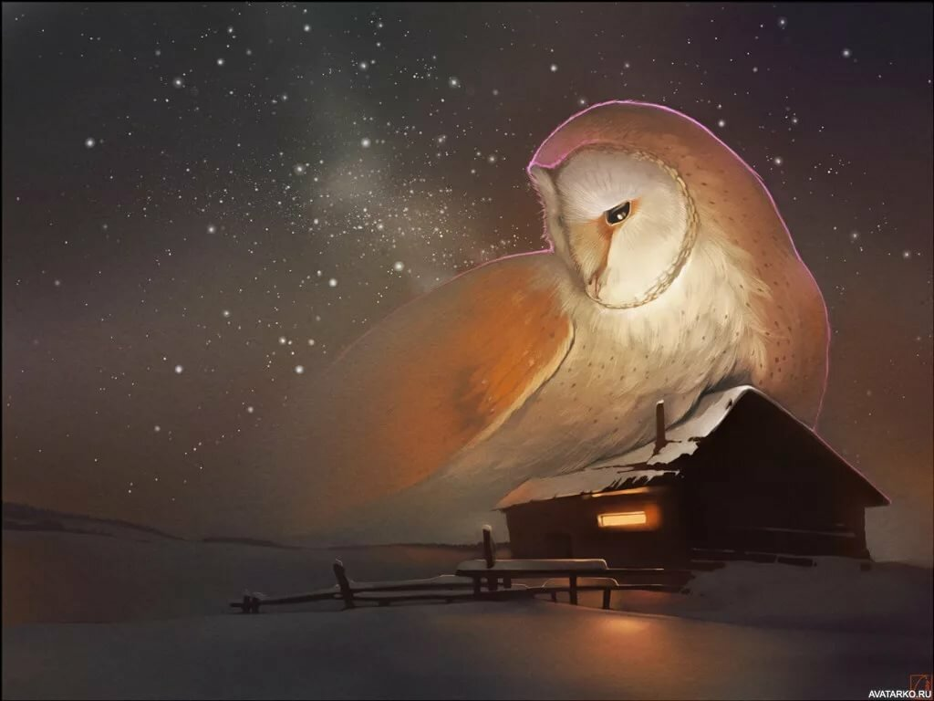 Годика, доброй ночи полуночникам картинки