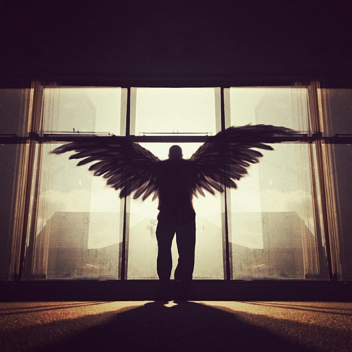 окончила картинки со спины ангел мужчина семена