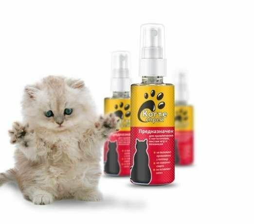 Когтеспрей - уникальный спрей для кошек в Туле