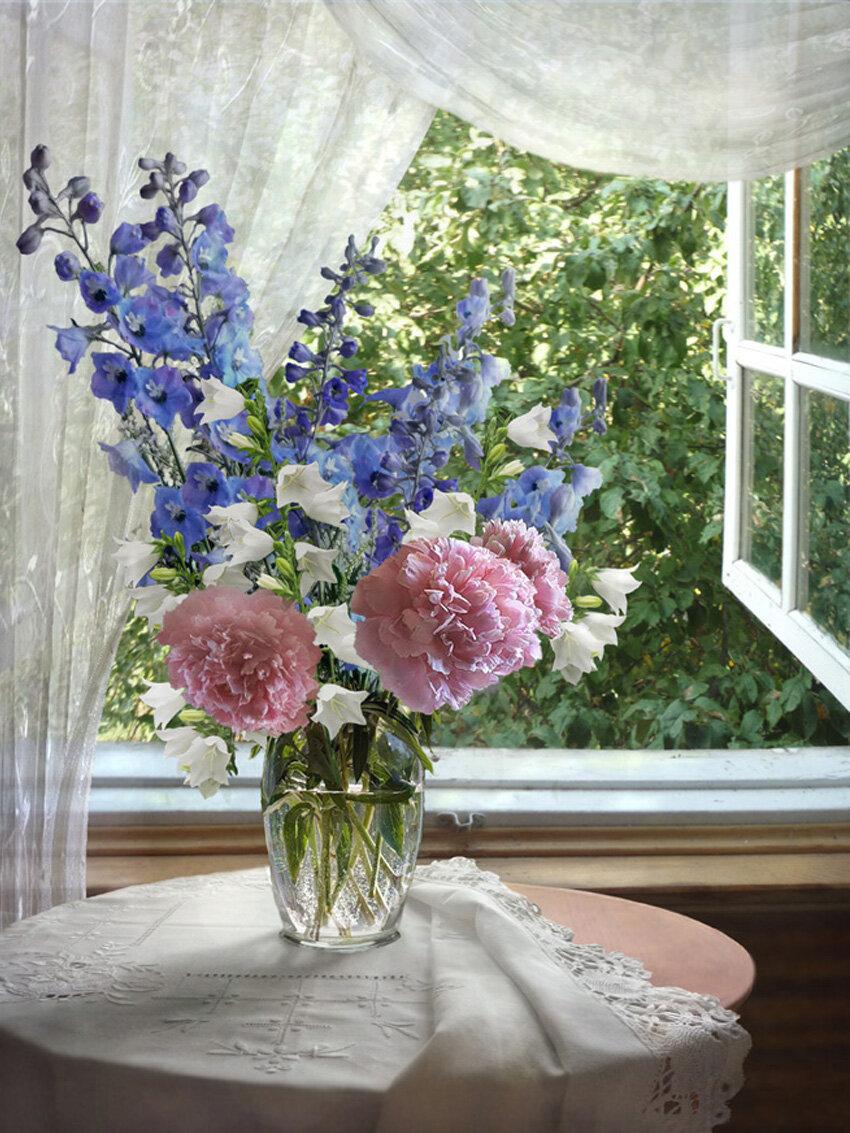 Цветы на окне картинки