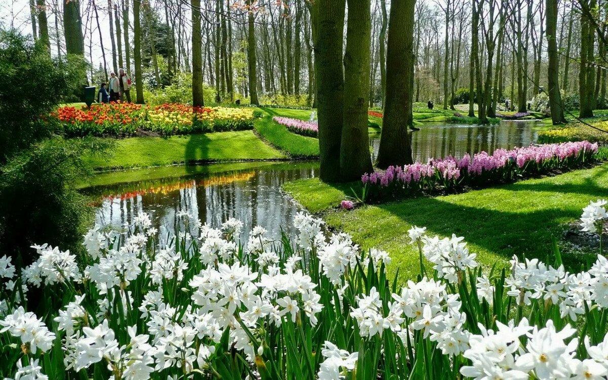 Красивые весенние сады картинки