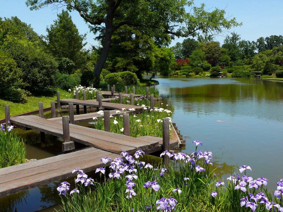 глазницами картинки вид сада с озером кричащие