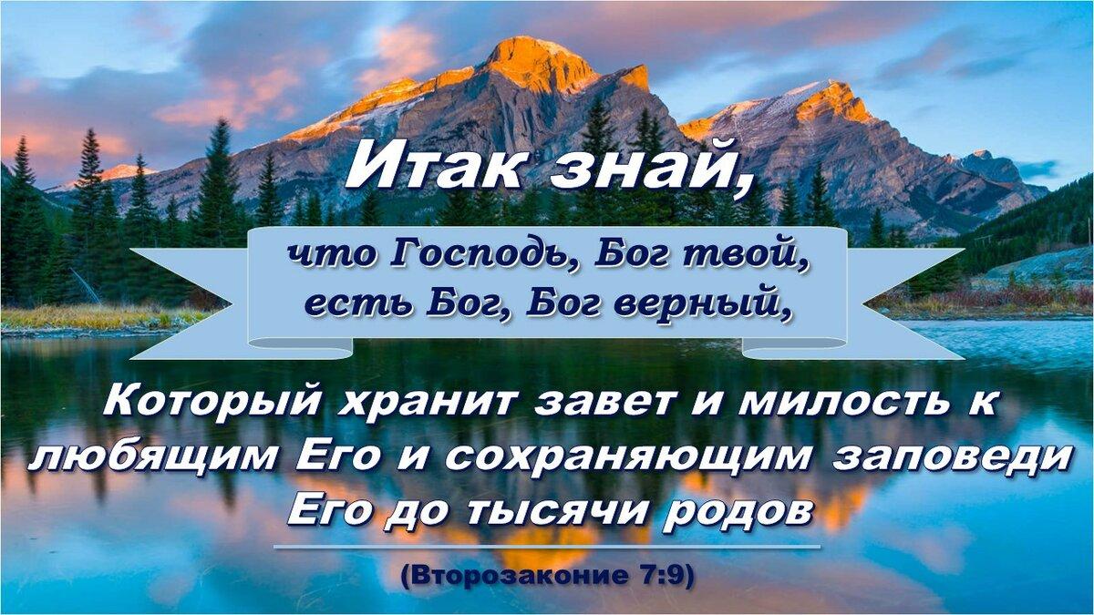 места писания из библии с картинками получает