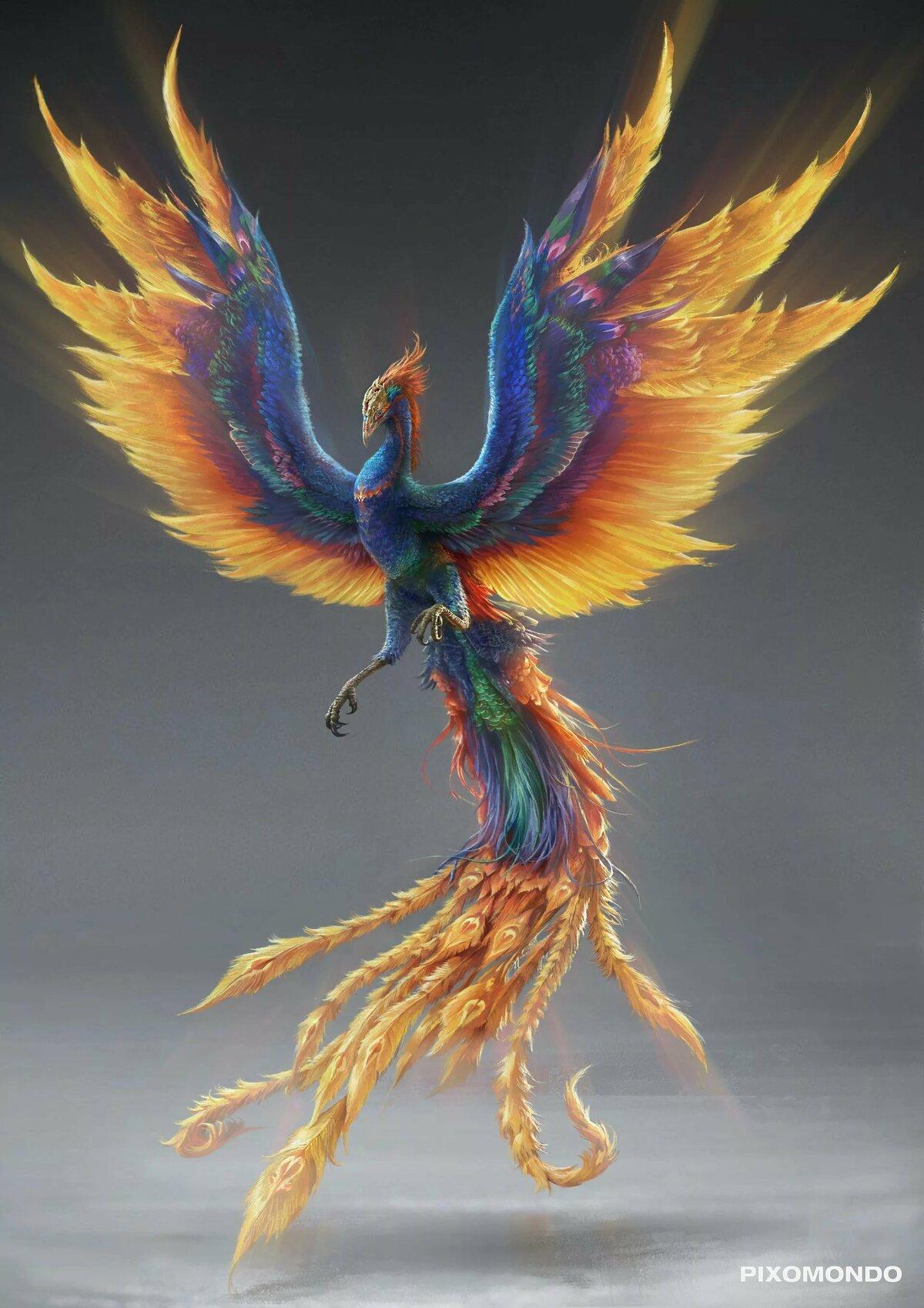 картинки птицы феникса память мастере