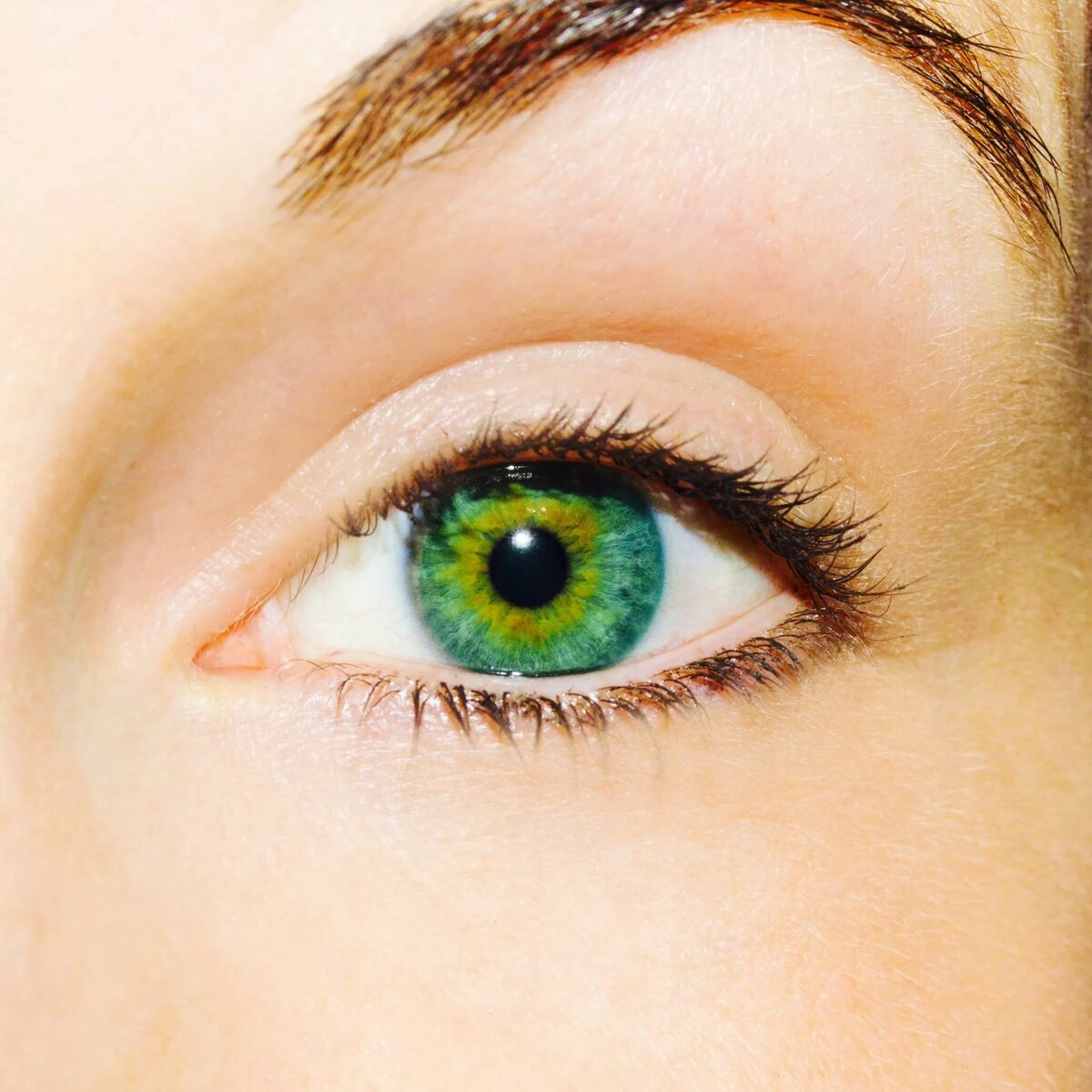 Картинки глаз серо-зеленого цвета