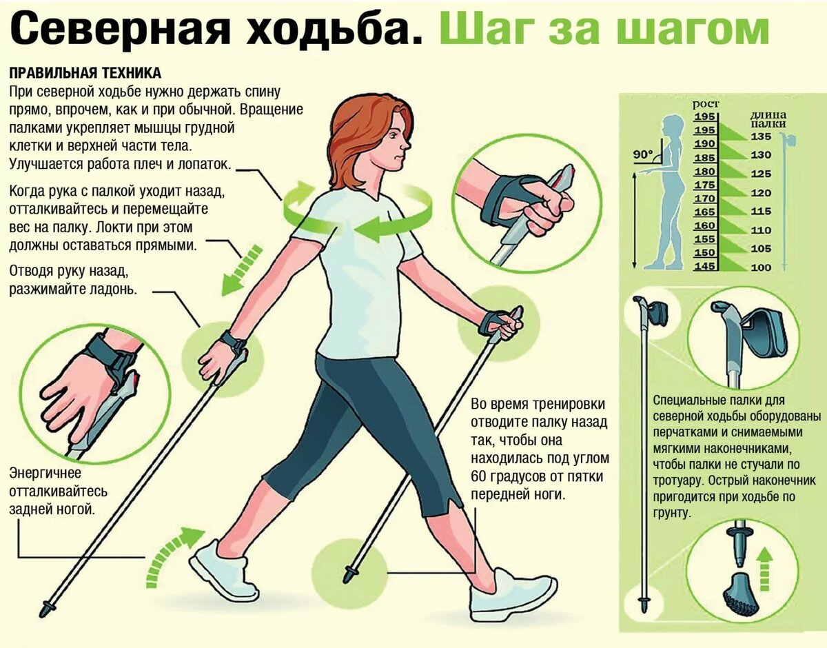 Как Правильно Ходить На Лыжах Чтобы Похудеть. Как похудеть, катаясь на лыжах