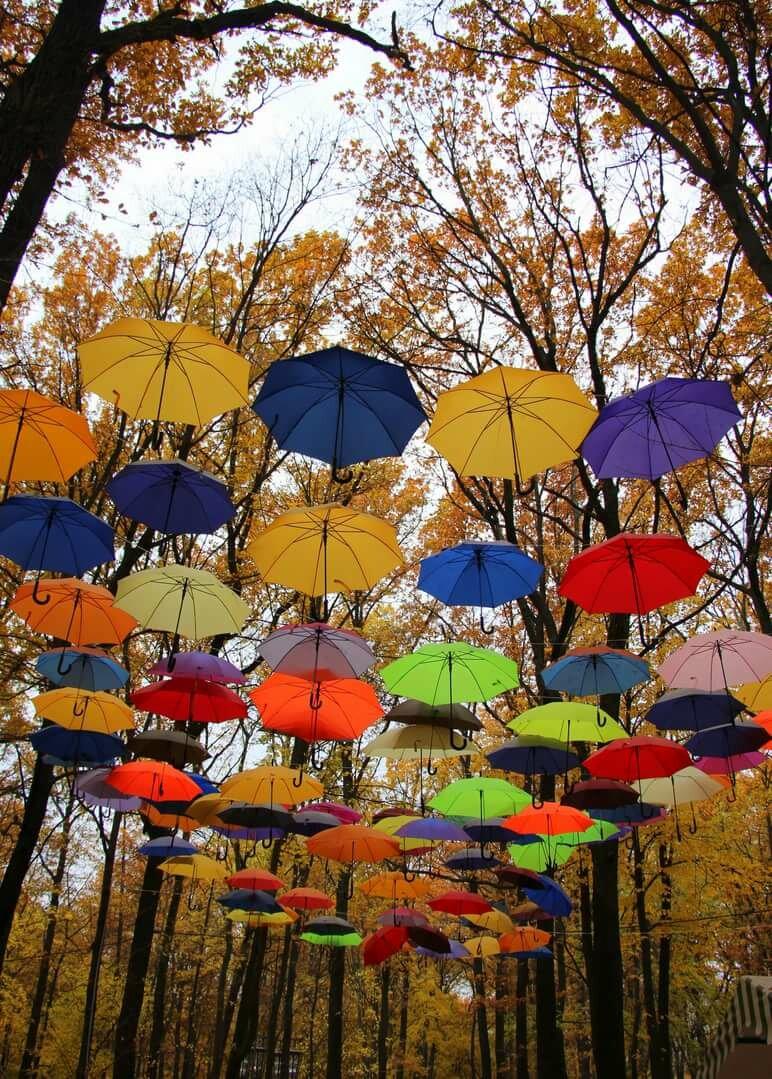Красивые зонтики картинки, надписью интервью
