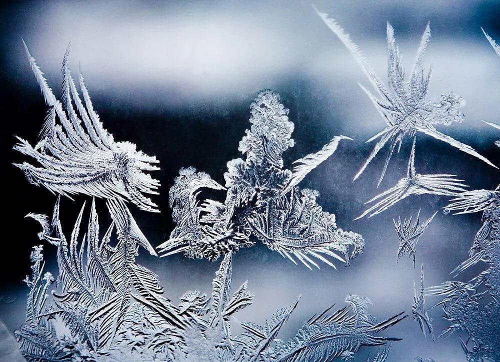 Снежинки на стекле картинки