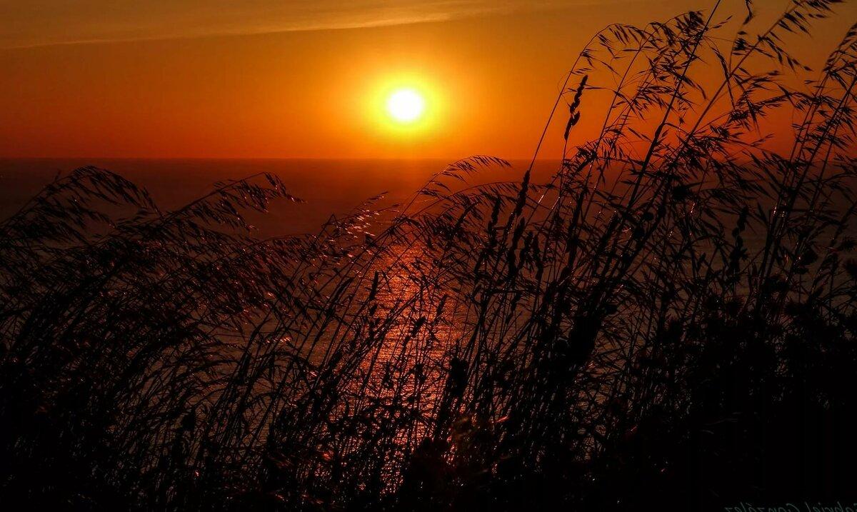 Картинки закат солнца, открытка через телефон
