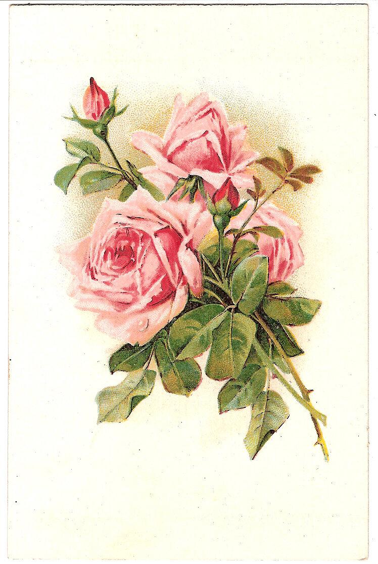 Винтажные картинки для открытки