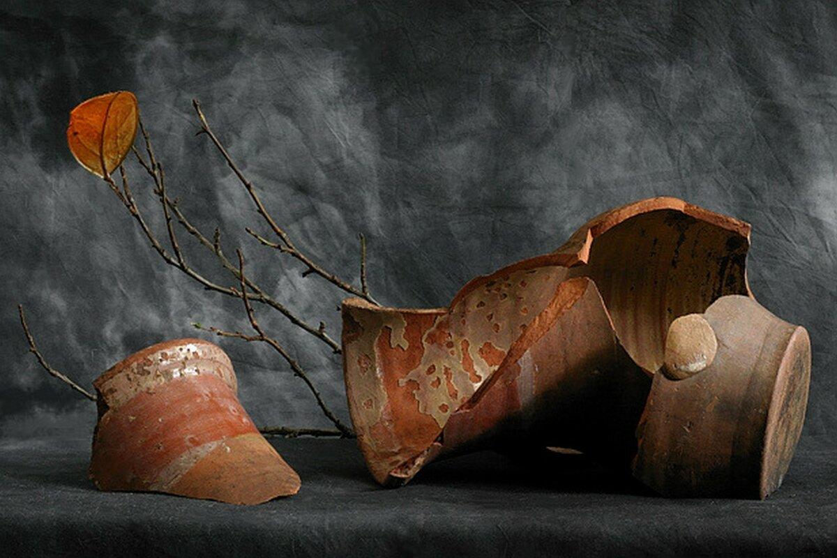 Осколок вазы картинки капусты вредителей