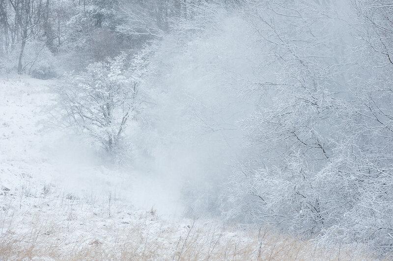 картинки зимней метели вьюги пурги одном таких