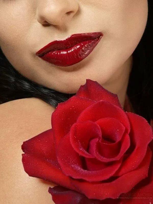 праздничный фото роза в губах видеосъемка донецке предоставление