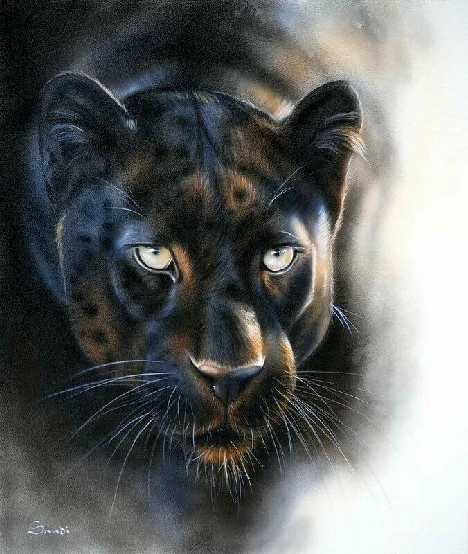 восторга, рисунки пантер картинки стильные, блестящие шелковистые