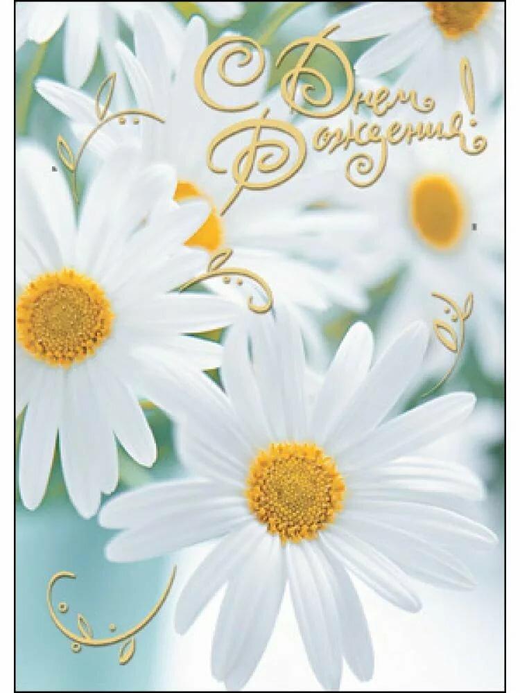 Поздравительная открытка с ромашками с днем рождения женщине