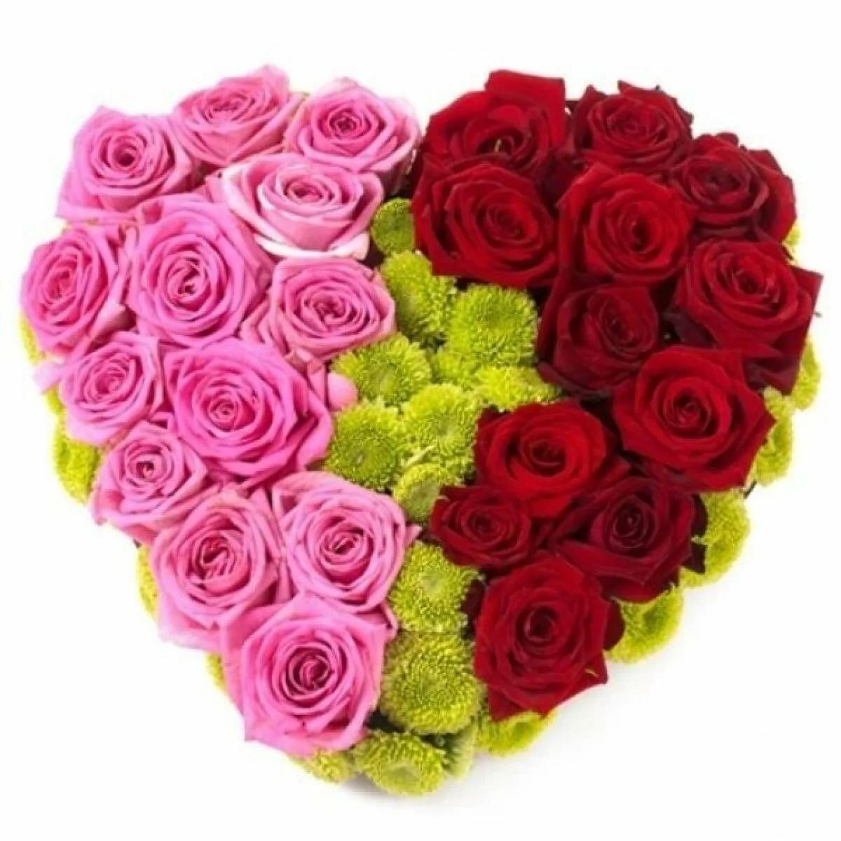 Днем, цветы для девушки картинки