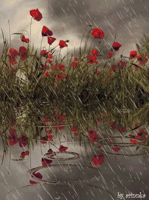 Дождь картинки красивые анимация