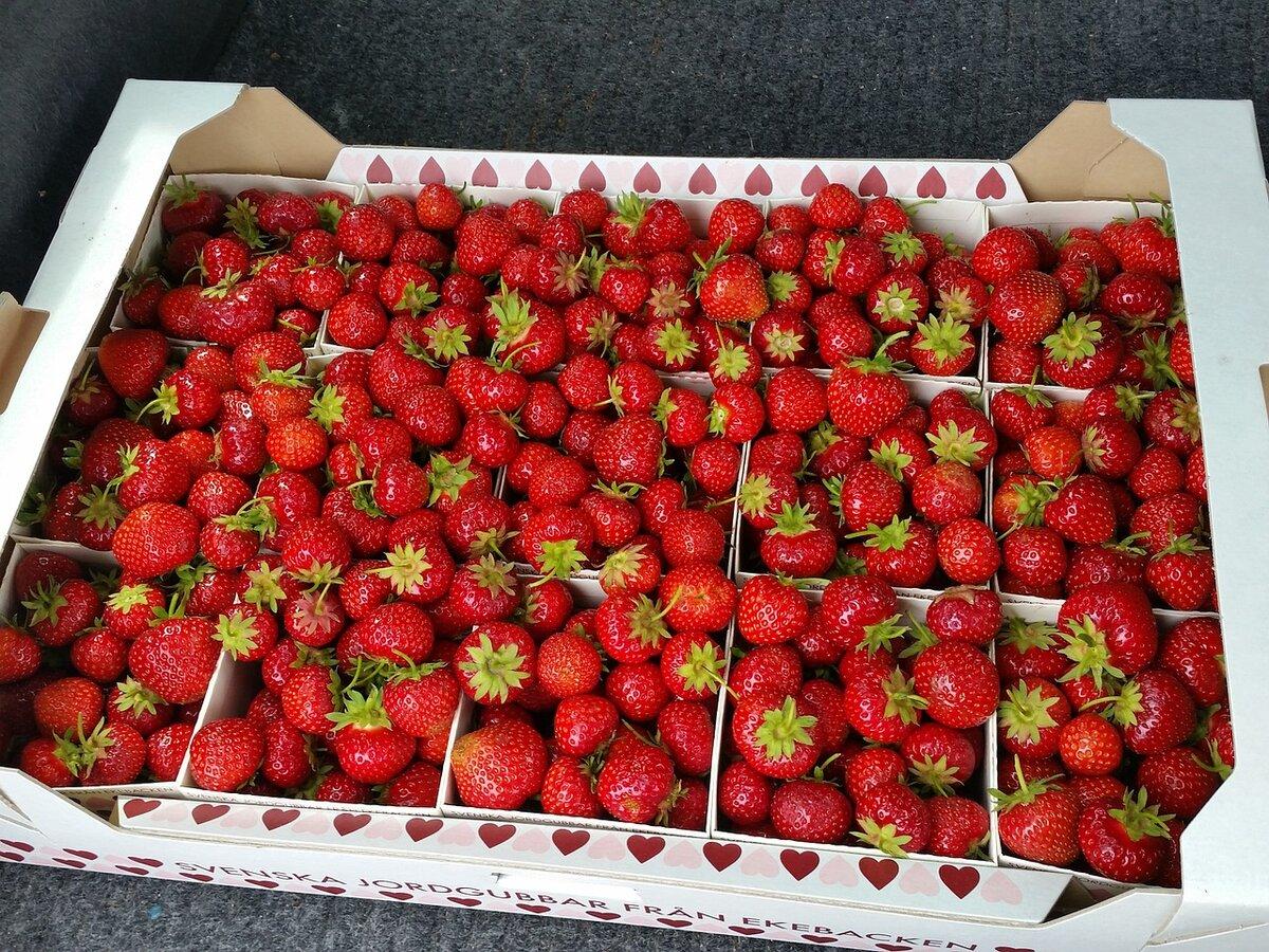 картинка ягоды в коробках есть балансировка вашему