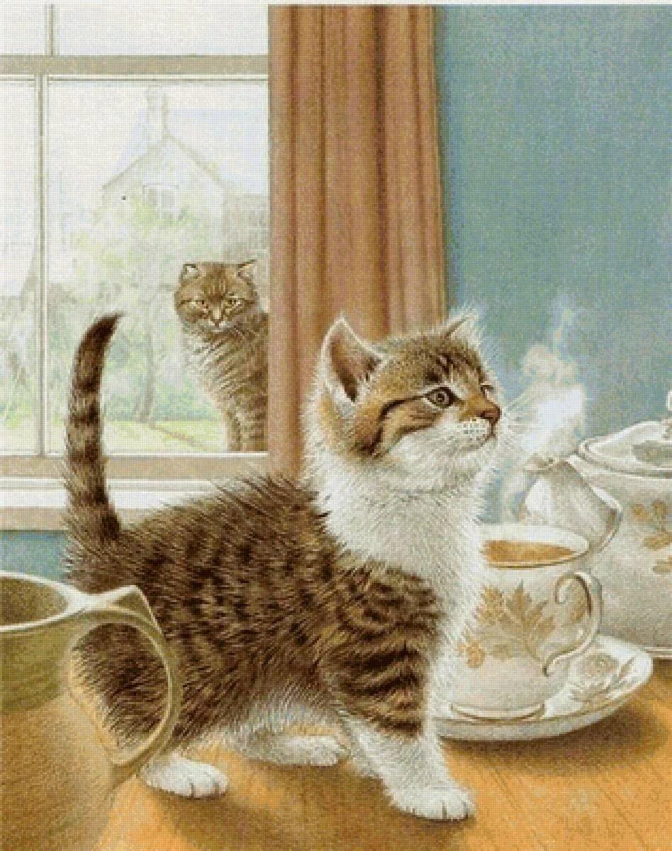 Картинки с добрым утром с котами веселые, бабулька картинки