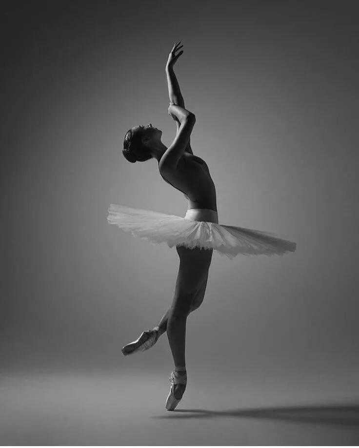 кошачья картинка балерина черно белая картинка фото немецких