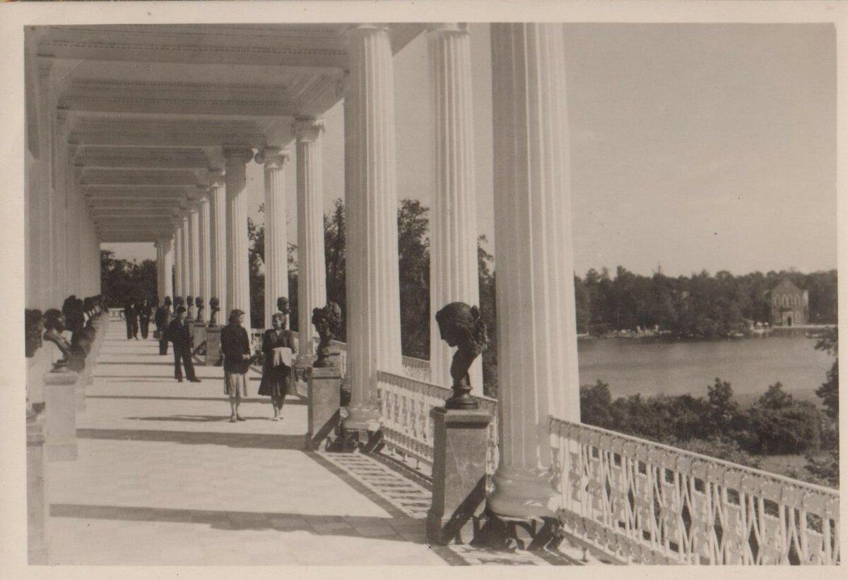 Пушкин. Камеронова галерея. 1955 год. Открытки