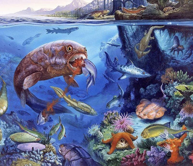 пуделя достаточно животные пермского моря картинки пусть твой дом