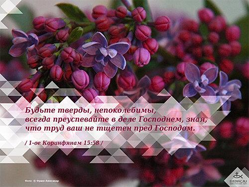 Христианские поздравления и стихи