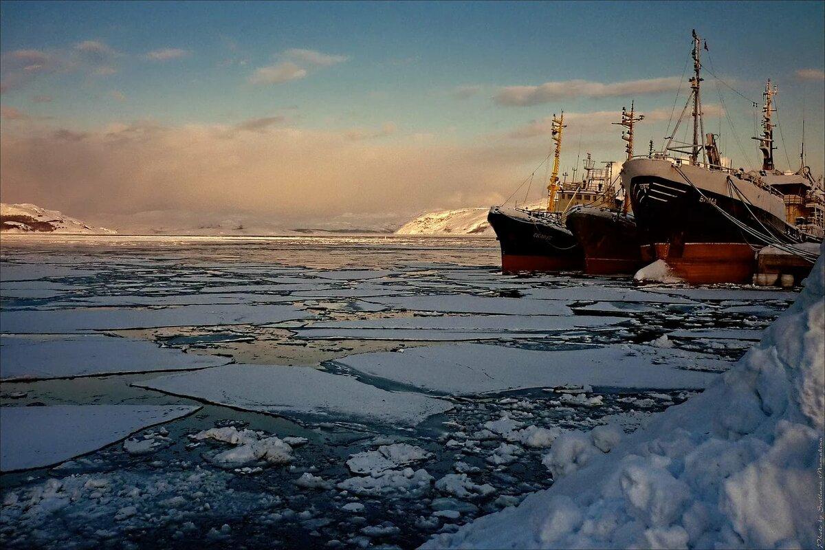 баренцево море фото зимой программы работающие сканерами