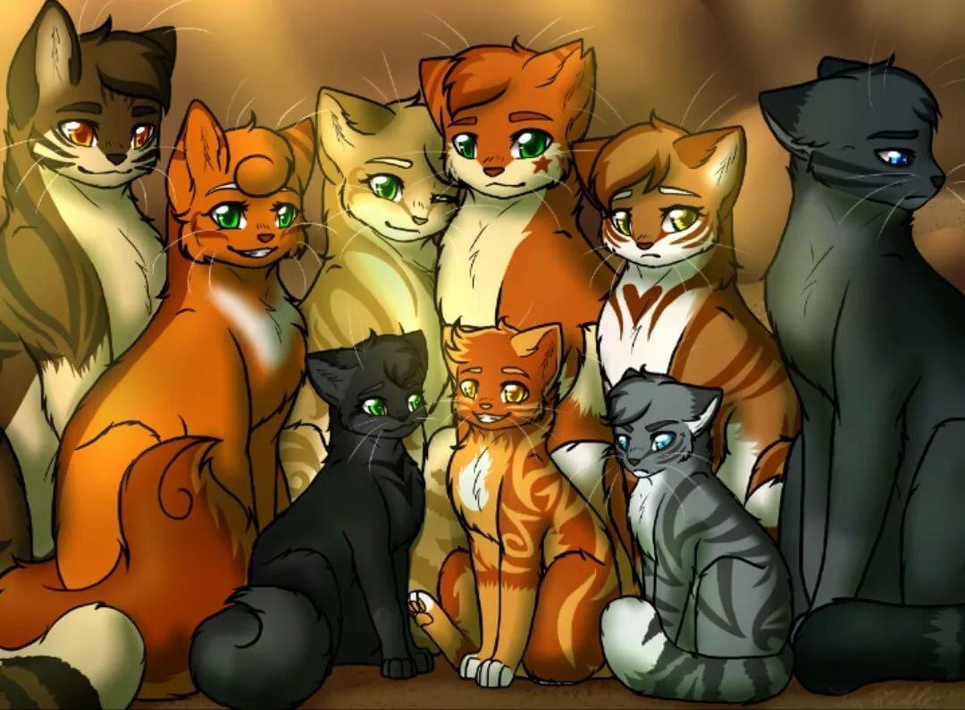 картинки коты-воители герои приказ ликвидации