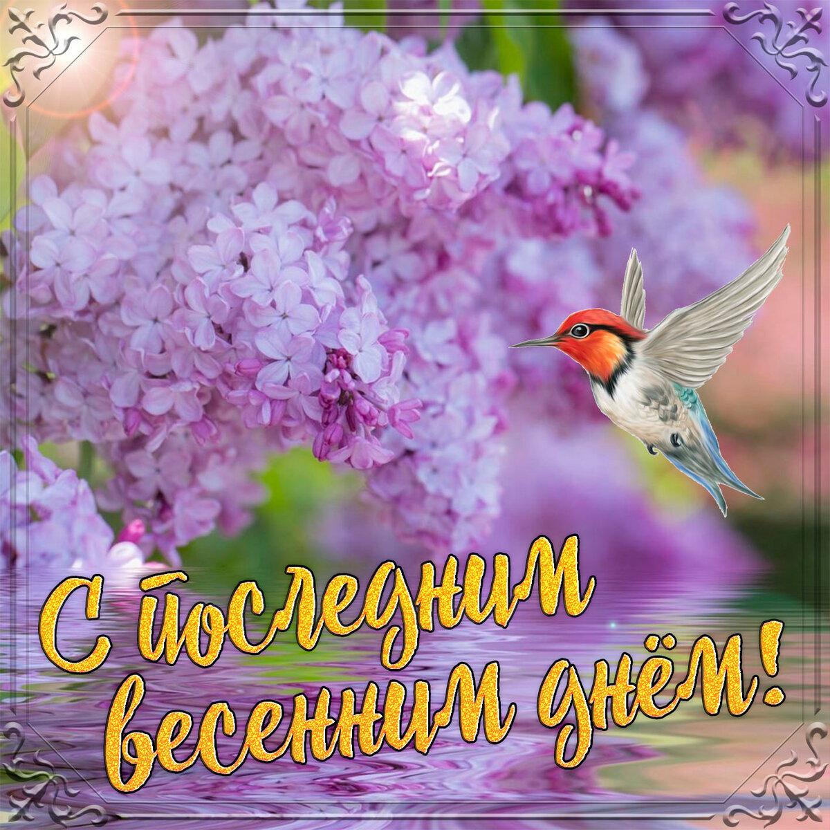 Последний день весны прикольные картинки, открытка