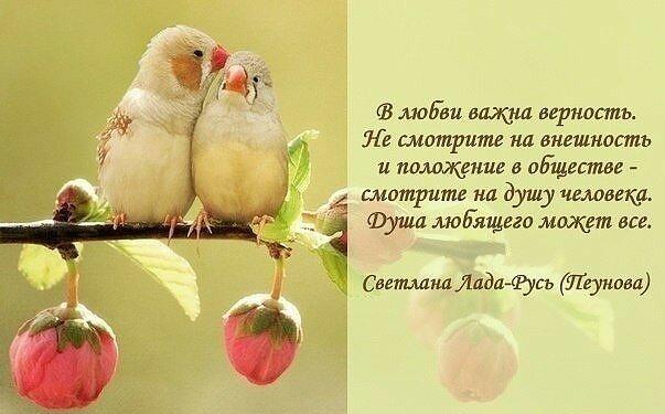 Днем, картинки и цитаты о любви и верности