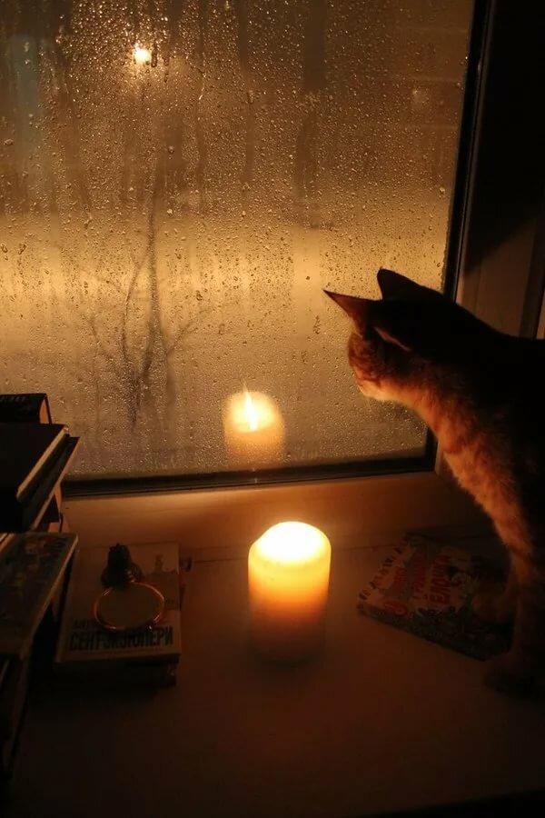 Скрыта как наблюдаем ночью на окне — photo 7