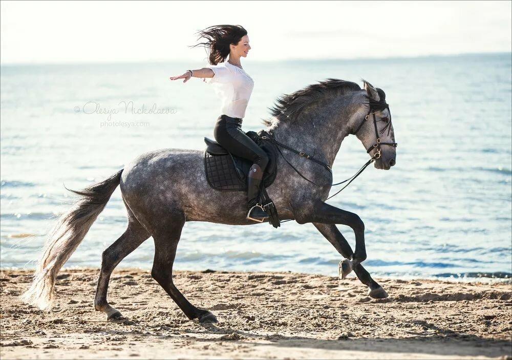 фото человека коня взял собой