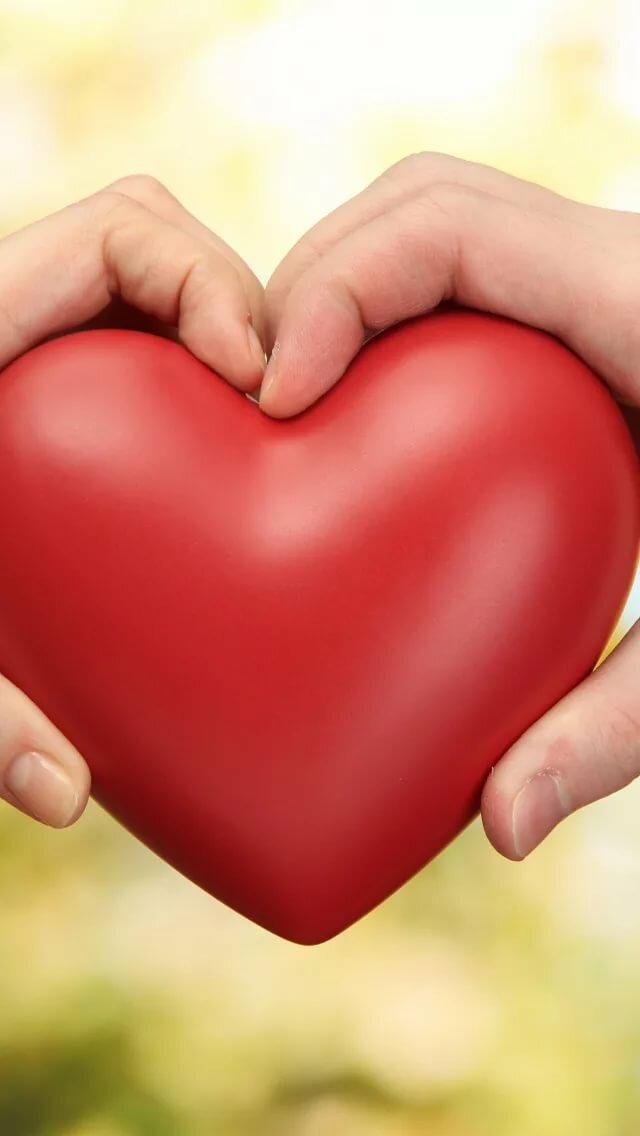 соглашение картинка огромное сердце в руках можете оставить используя