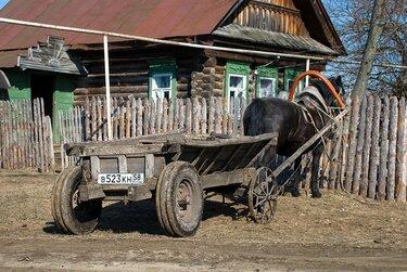 деревенские лошади с телегой
